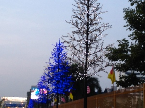 Christmas lights on plastic trees . . . in September