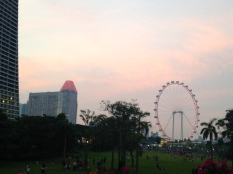 Singapore Flyer (I wonder how much those pods cost for the night?!)