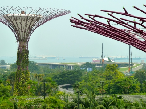 The shipping lanes are rather nearby the tranquil Gardens by the Bay. It reminded me of visiting Sentosa and watching oil refineries do their thing.