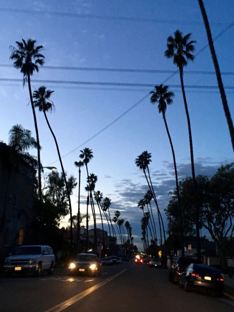 Driving to Long Beach